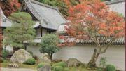 livre de F. Peeters - le Japon au jardin - photo G. Vandesande