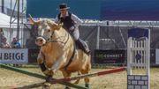 Aston, un taureau d'une tonne, se monte comme un cheval !