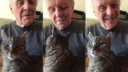 Anthony Hopkins improvise au piano une sérénade pour son chat Niblo