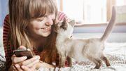 Les signes qui démontrent combien votre chat vous aime