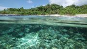 Eaux limpides et plages immaculées