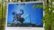 Les rêveries subaquatiques du photographe Harry Fayt exposées au Bois des Rêves