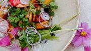 The Bio Veggie Company donne des idées pour un Very Veggie Xmas