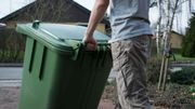 Que faire avec les poubelles pour éviter les asticots?