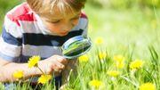 Optimisez la biodiversité dans votre jardin.