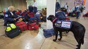 Les secouristes américains prêts à partir