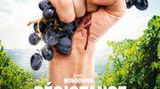 """""""Résistance naturelle"""", nouvel hommage au vin par l'auteur de """"Mondovino"""""""