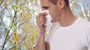 Les pollens s'installent : comment s'en prémunir ?