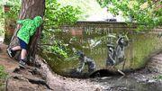 Banksy revendique de nouvelles œuvres apparues sur des murs anglais