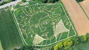 En Bavière, perdez-vous dans un labyrinthe à l'effigie de Beethoven
