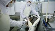 La Chine, nouvel eldorado du caviar