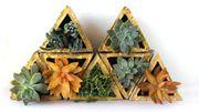 Déco : des petits modules en béton pour un mur végétal