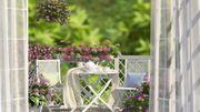 """30ème édition du concours """"Festival Floral Comines Europe"""""""
