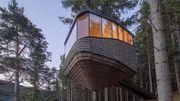Norvège: une tiny house dans les arbres au-dessus des fjords pour les vacances
