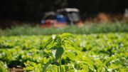 L'art de réinventer l'agriculture