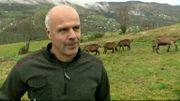 Bruno n'a jamais été attaqué mais rencontre régulièrement des éleveurs et bergers dans les zones de présence du loup. Accepter le loup, c'est accepter toutes les conséquences paysagères, économiques.
