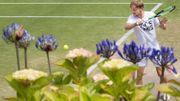 """Goffin, qui va défier Djokovic : """"Essayer de faire un grand match"""""""