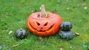 Fêtez Halloween à Saint Gilles