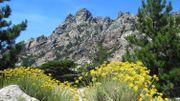 50 ans du GR20: 3 visites en Corse accessibles à tous les vacanciers cet été