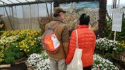 Une serre de 1 000 mètres carrés accueille également un jardin d'hiver.