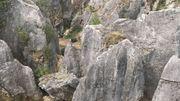 """La pierre a été """"poncée"""" par une eau chargée de CO2. C'est ce que l'on appelle l'érosion karstique."""