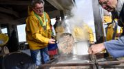 Les pêcheurs amateurs ont capturé 102 tonnes de crevettes grises en2018