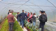Une formation de design en permaculture, une première en Belgique