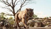 """Un nouveau trailer du """"Livre de la jungle"""", centré sur Shere Khan"""