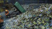 Cartons recyclés et pesticides mettent notre santé en danger