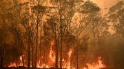 Incendies en Australie: Elton John, Metallica, et d'autres artistes se mobilisent