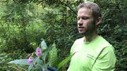 Frédéric Mouchet, coordinateur du contrat de rivière Haute-Meuse montre les fleurs et les capsules de la balsamine de l'Himalaya qui renferment des centaines de graines