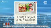 Attention aux bactéries dans la boîte à tartines!