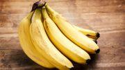 Cinq aliments bannis à tord des régimes