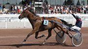 L'Hippodrome de Wallonie présente une réunion de 8 courses