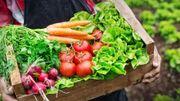 Le top 5 des fruits et légumes à cultiver chez soi.