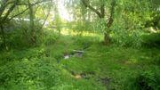 La Tit'Mariot, un petit paradis près de Membach où deux maraîchers vous proposent de partager cette aventure