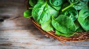 Certains légumes verts doperaient la santé intestinale