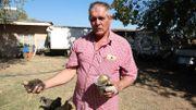 Johan Dewing montre un poussin de six mois, qui serait victime de la poussière venue de l'usine d'ArcelorMittal.