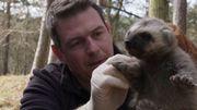 A la rencontre d'un Ranger du Parc Animalier de Han-sur-Lesse