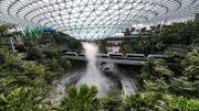 L'aéroport de Singapour met la nature sous dôme pour attirer les voyageurs