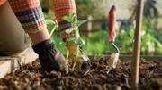Prêter son jardin... Et cultiver le lien !