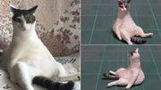 Un artiste japonais transforme des memes de chats en sculptures