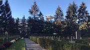 le petit cimetière à l'ombre de la tour de la RTBF qui le gère désormais.
