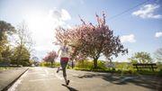Les raisons scientifiques pour lesquelles le printemps est la meilleure saison