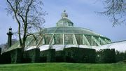 Serres royales de Laeken: des plantes issues de l'un des plus beaux parcs du Hainaut et de Wallonie