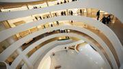 Trois oeuvres impliquant des animaux vivants retirées du Musée Guggenheim de New York