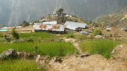 Les maisons du village de Paelep sont désormais faites de frêles tôles ondulées.