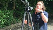 Didier Vangeluwe, ornithologue à l'Institut Royal des Sciences naturelles de Belgique