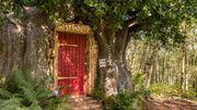 Vous pouvez louer la maison de Winnie sur Airbnb!