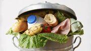 Ecoconso: comment gaspiller moins de nourriture?